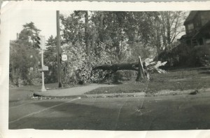 North and Seymour Streets.  October 22, 1954