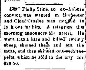 Newspaper Auburn NY News & Bulletin 1882 Philip Stine